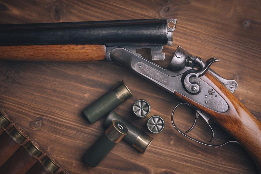 Porte de arma de fogo no Brasil